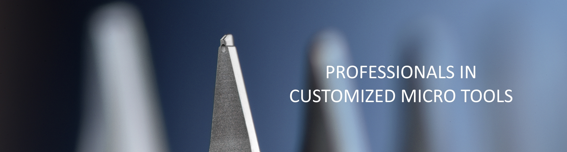 Micro Point Pro Ltd (MPP)